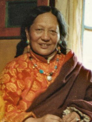 File:Tare Lhamo.png